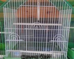 parrots_kletki_0021