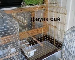 parrots_kletki_0025